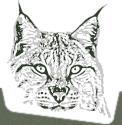 woodcraft-school-logo
